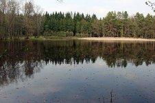 Střední Tušimský rybník