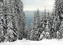 Kamenná v zimě