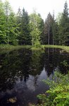 Malebný rybníček s ostrůvkem uprostřed