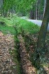 Mezi Pilskou a Lázskou, Struhy coby příkop u cesty