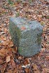V okolí lze nalézt opracované kameny...