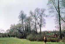 U Boreckého potoka, 1964